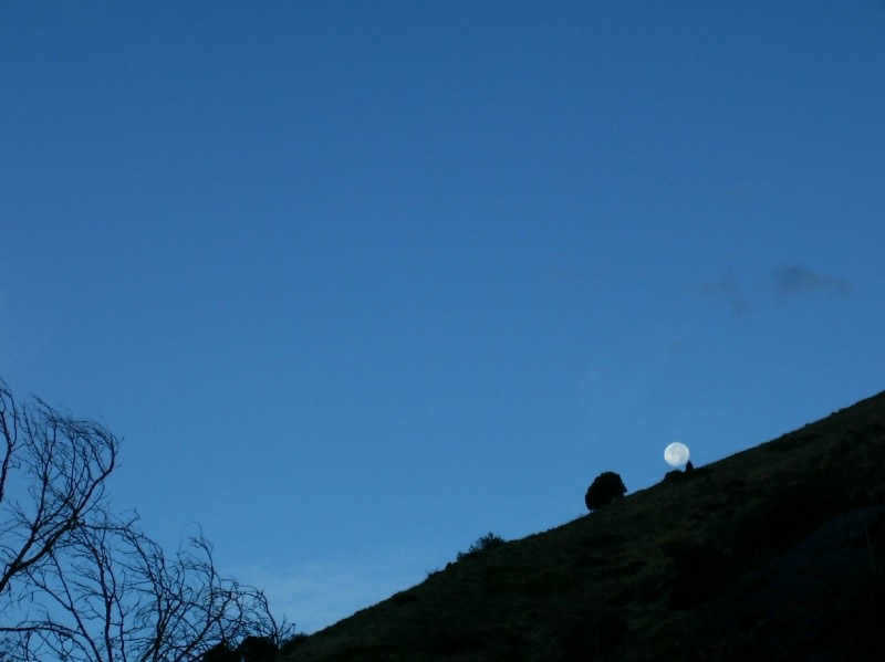 Moon setting over the Apex Trail